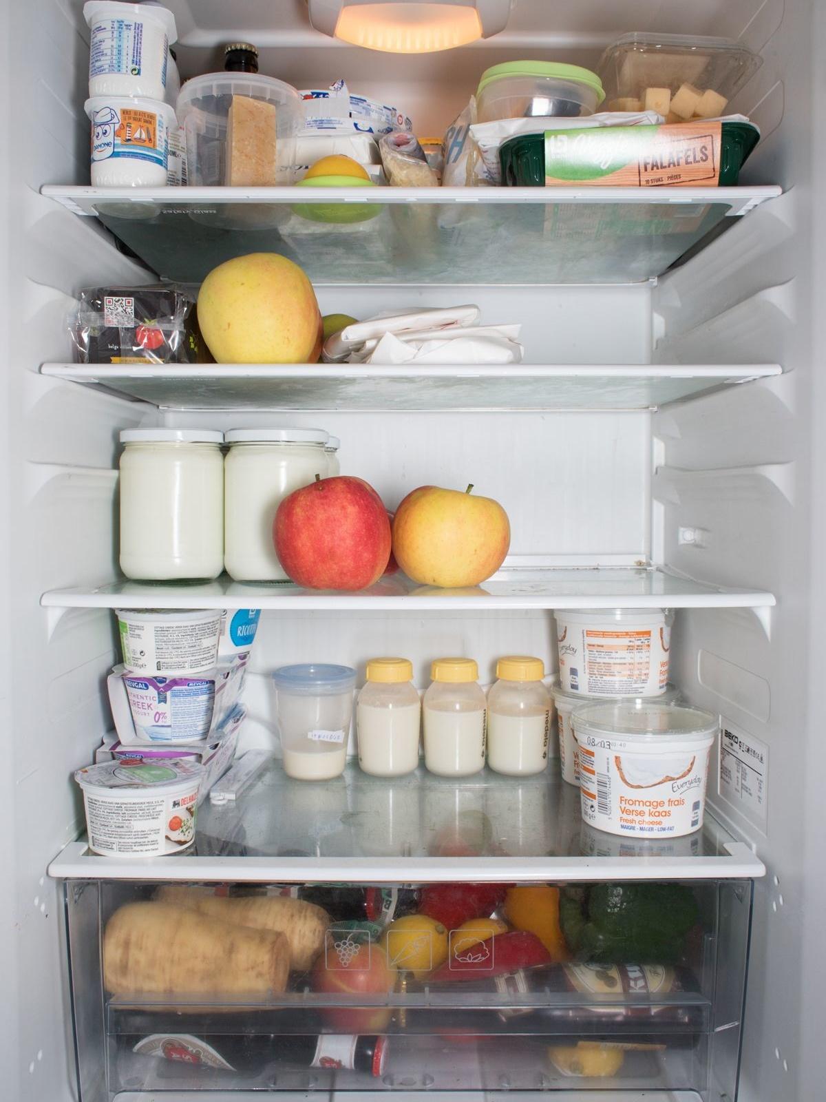 De koelkast van een gezin van drie personen, Flor Maesen, Martha T'Hooft & Tim Theo Deceuninck