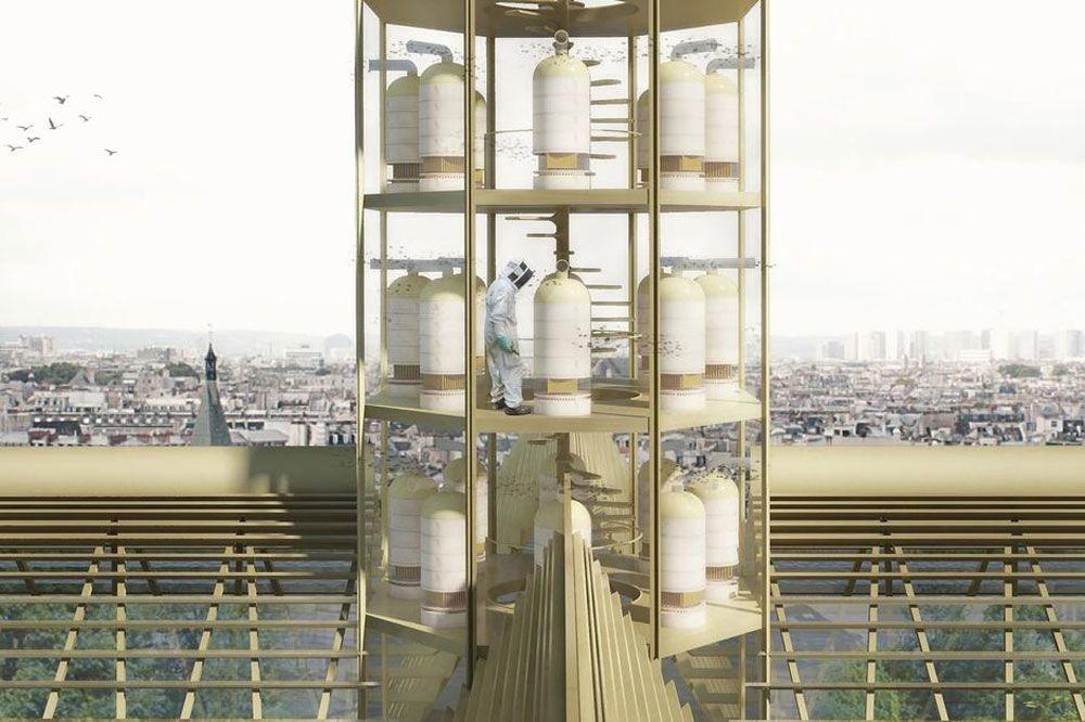 In de nieuwe toren zouden bijen de hoofdrol spelen, Studio NAB