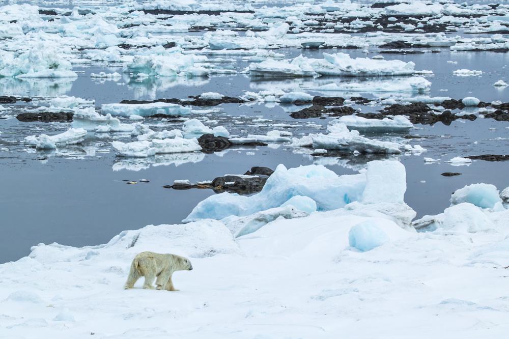 Groenland, Getty