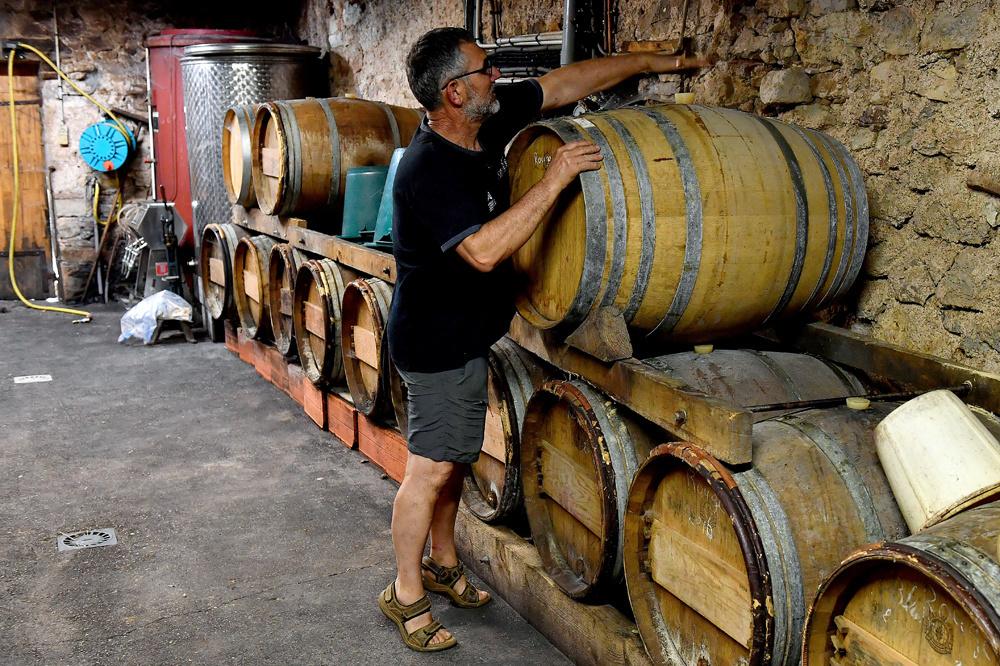 Jean Mage, Président de la Fédération des vins de Corrèze, AFP