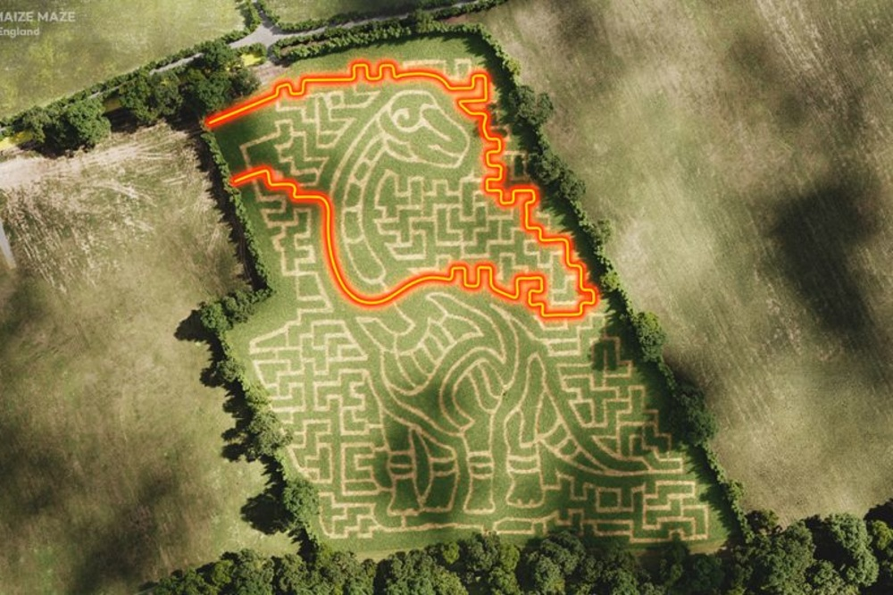 Cornish Maize Maze, Quick Quid