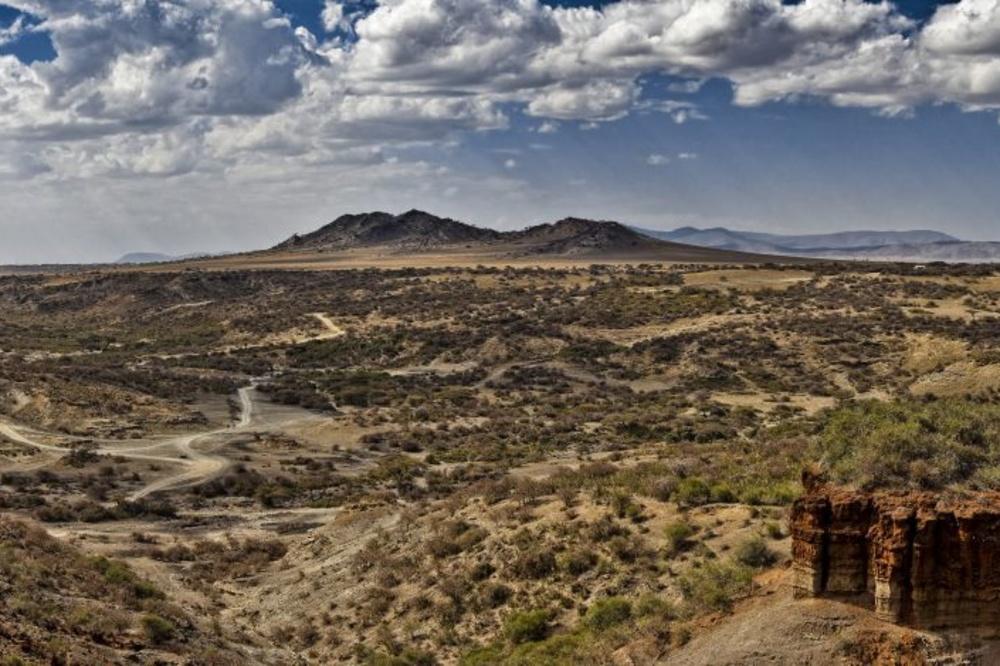 Serengeti National Park, Noel Feans, Wikicommons