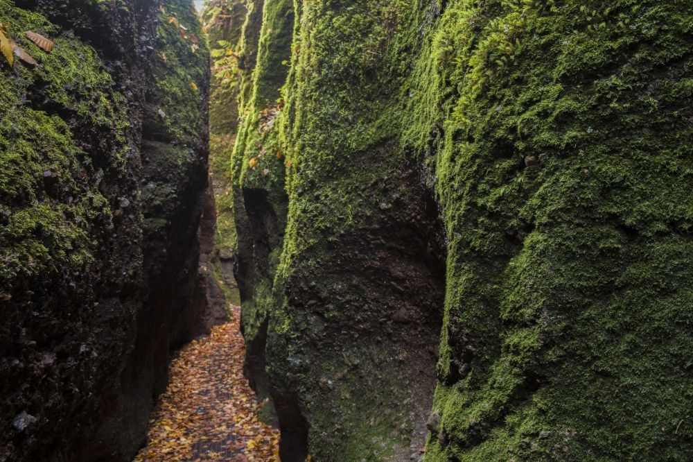 Drachenschlucht, Getty Images