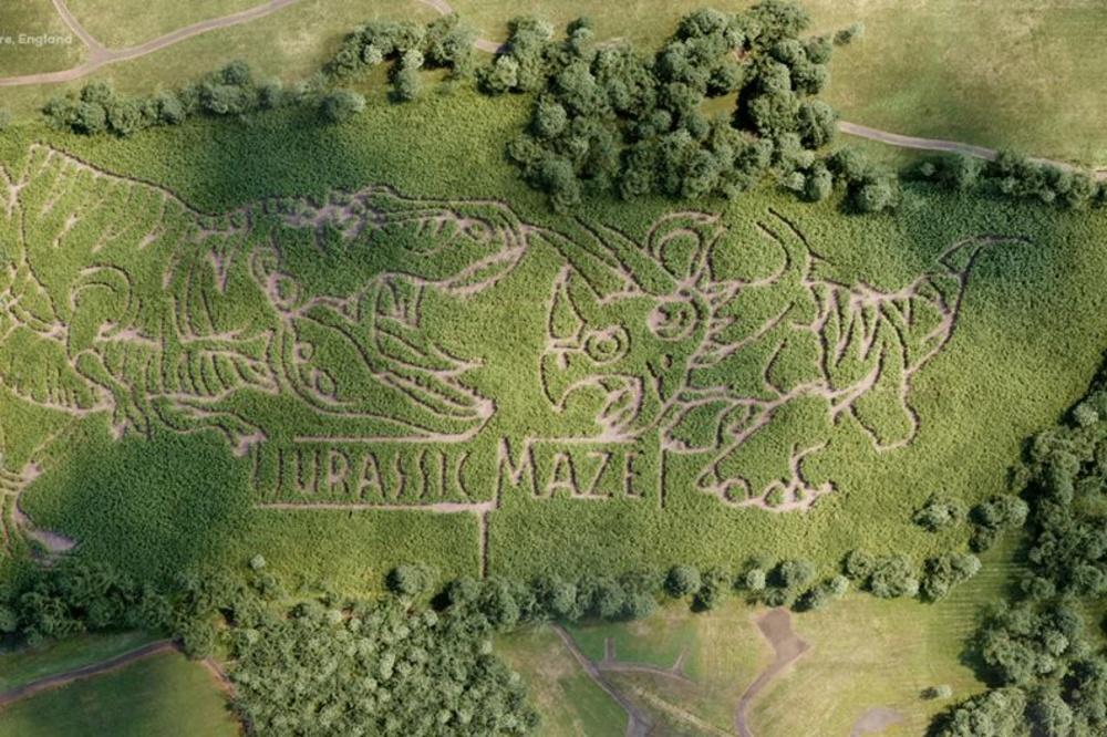 York Maze, Quick Quid