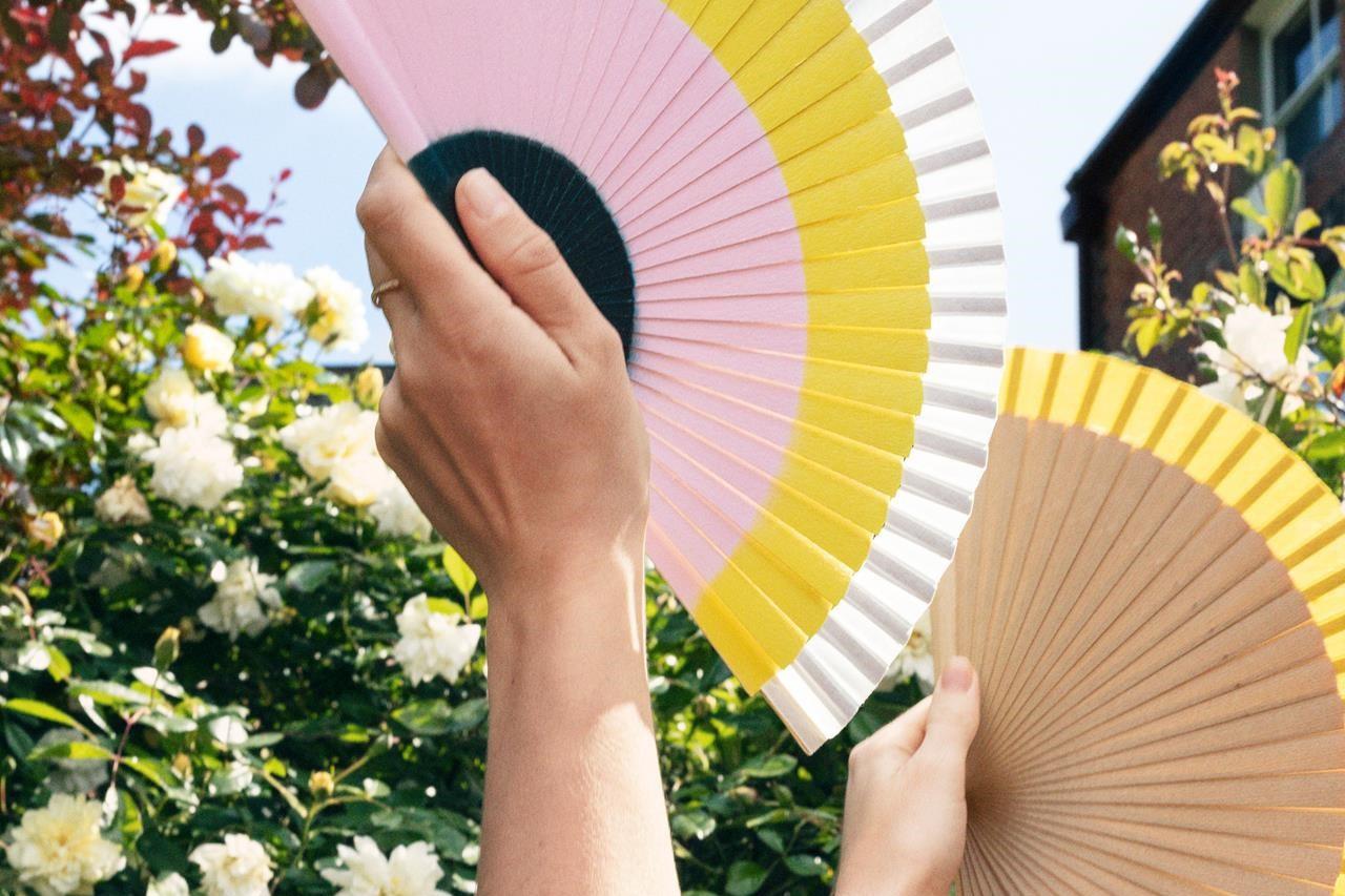 De waaier bijkt een van de populairste accessoires deze zomer, Fern Fans en & Other Stories