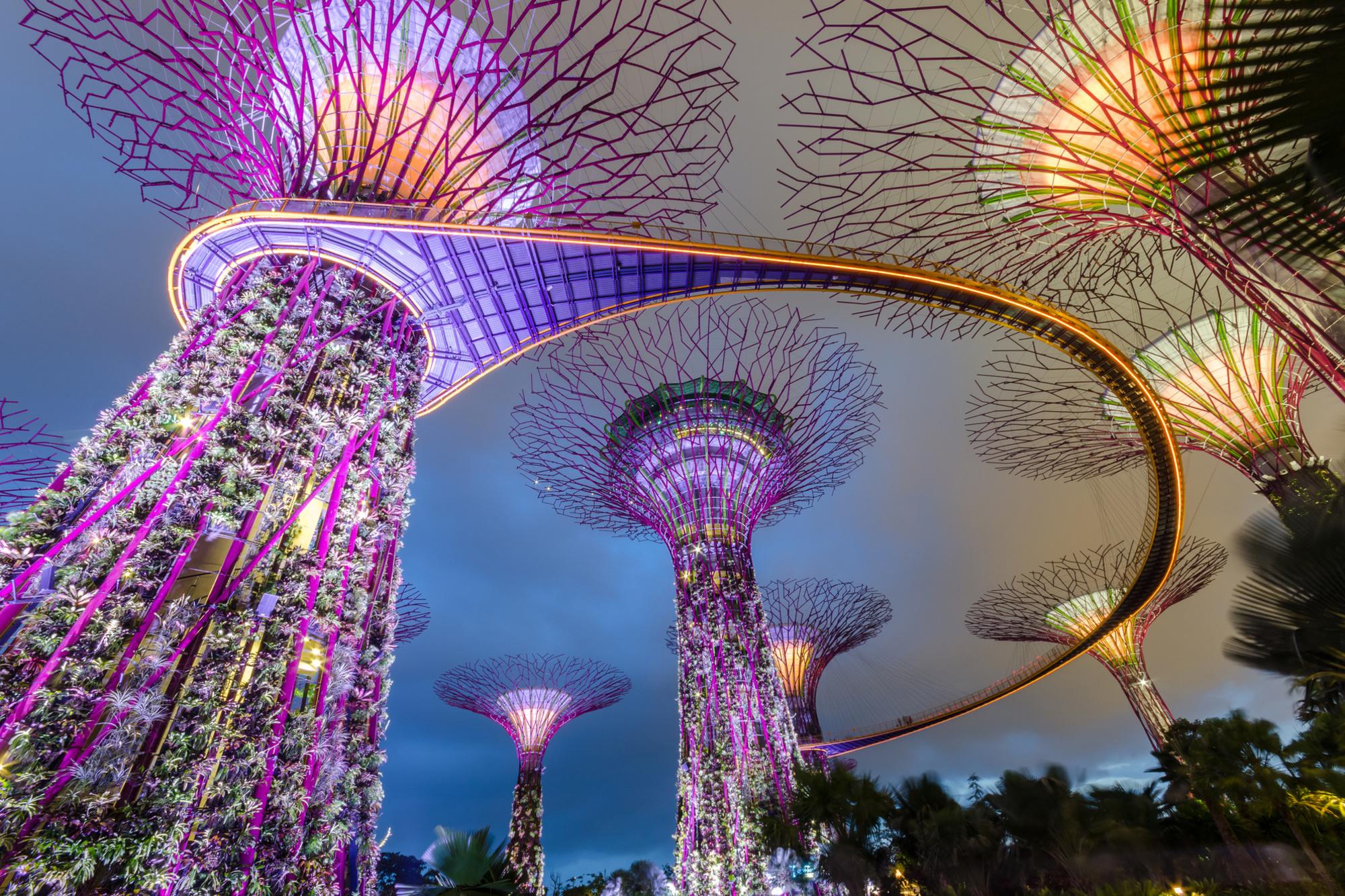 Futuristische bomen in het moderne Singapore, Getty