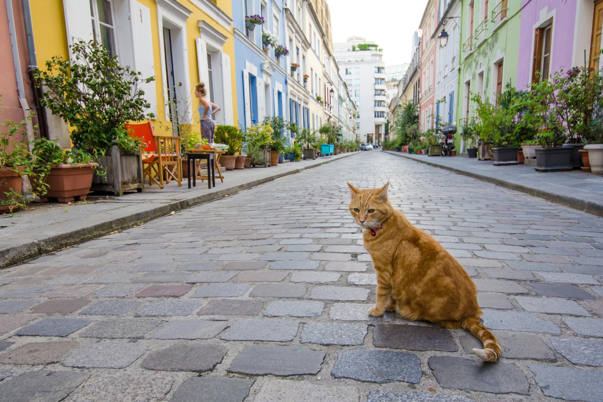 Rue Crémieux in Parijs., Getty