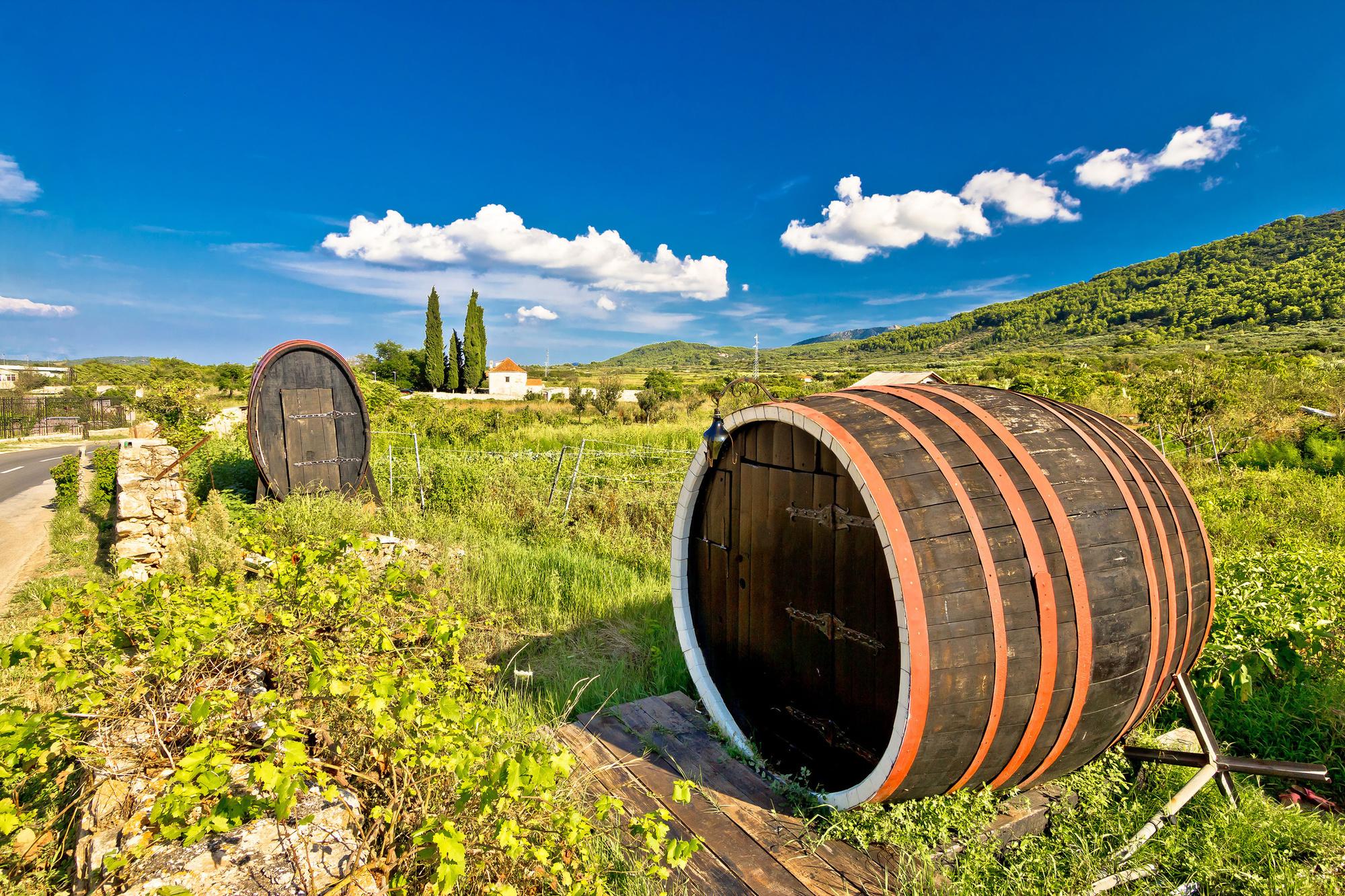 Deze wijngaard staat op de UNESCO werelderfgoedlijst., Getty Images