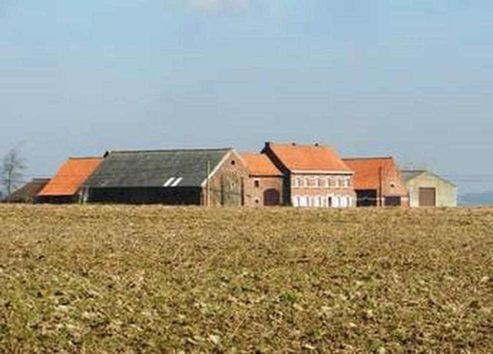 Heuvelland: Hoeve Pilgrimshof., Agentschap Onroerend Erfgoed