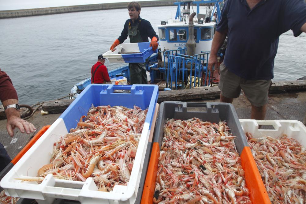 Retour de pêche au Guilvinec, Getty Images