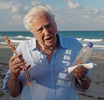 Sir David Attenborough, BBC