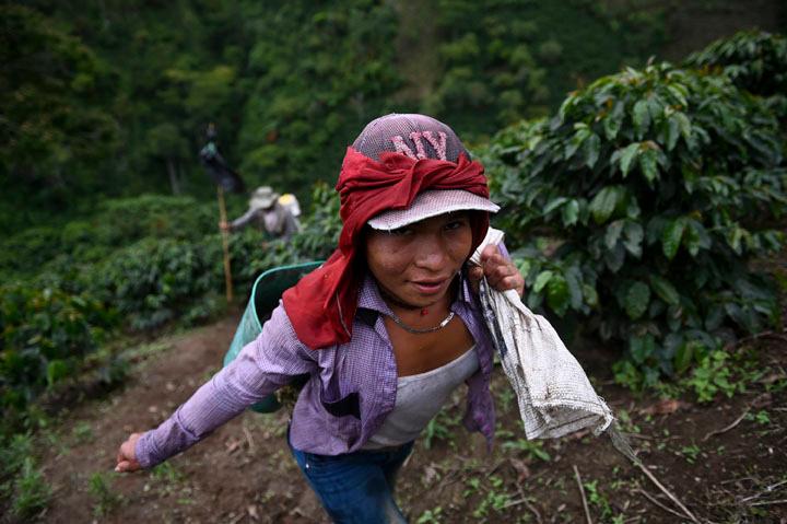 Erika Aisama, AFP