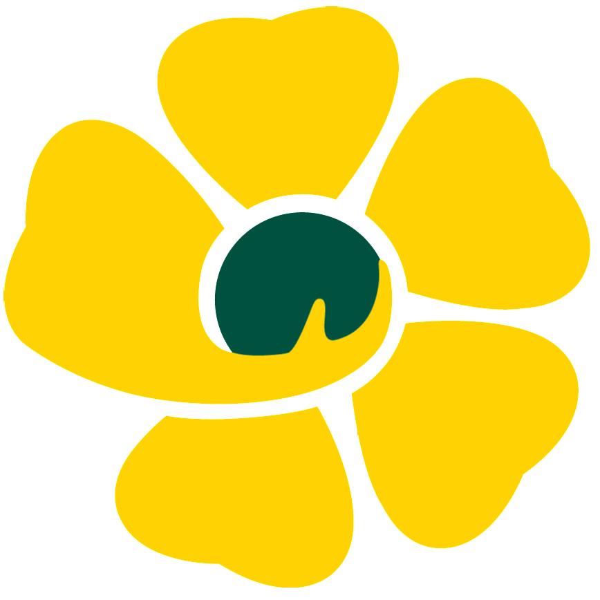 Diensthoofd ouderenzorg - Directeur woonzorgcentrum (m/v)