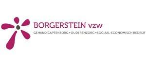 Borgerstein
